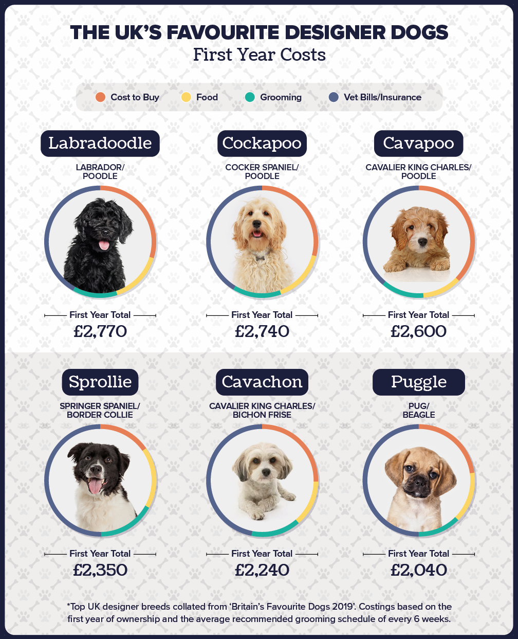 first year costs of dogs