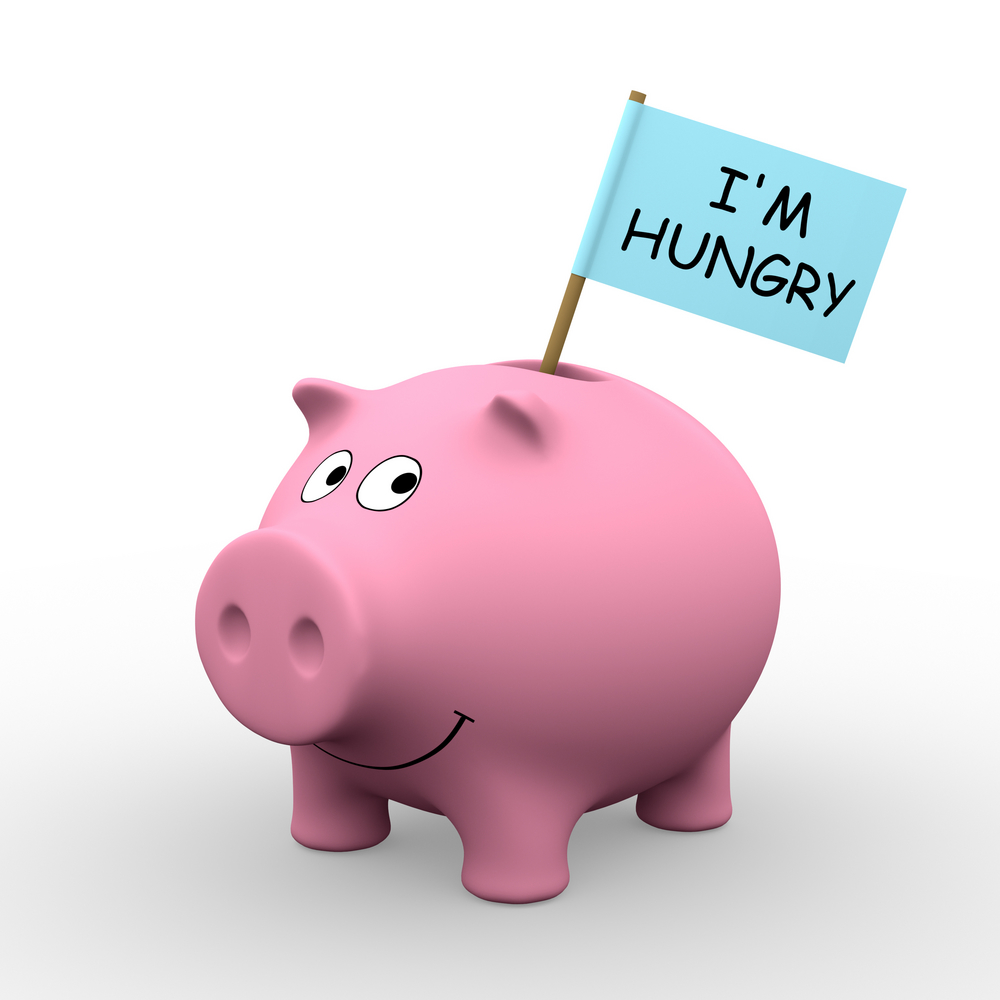 An empty piggy bank with no savings